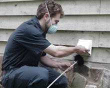 254831-dryer-vent-cleaning